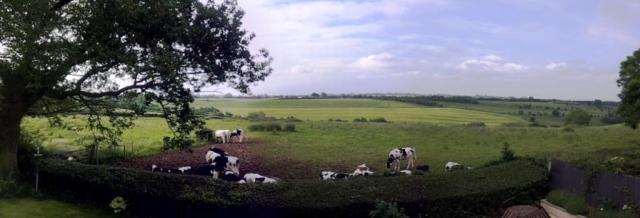 Let's think about we really need before we start destroying the Ashbourne Green Belt